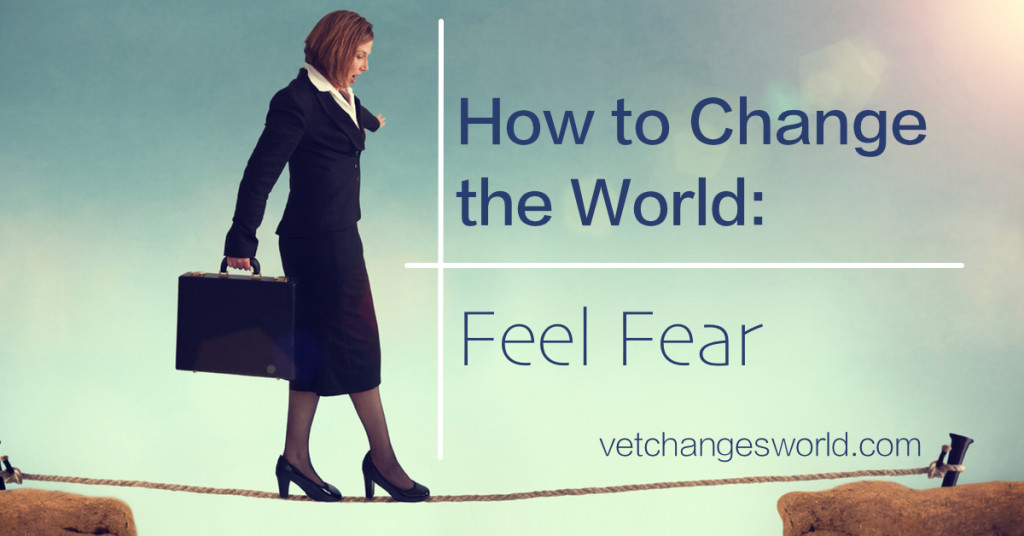 Feel Fear - How to Change the World