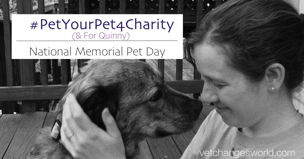 Pet Your Pet For Charity